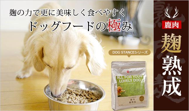 ドッグスタンスを食べる犬