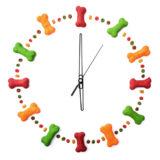 ドックフードを与える時間と量
